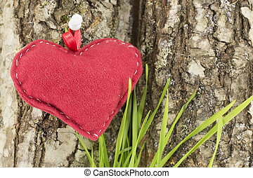 red heart on a tree bark with grass