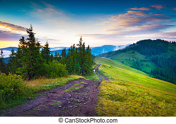 Early morning summer scene in the Carpathian mountains...