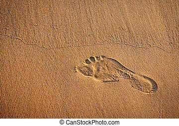 foot print - Single footprint in the wet sand of a beach