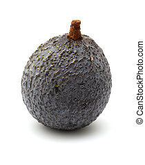 round dark skinned avocado pear isolated on white background