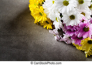 Pink, white and yellow oxeye daisy flowers bouquet on grey...