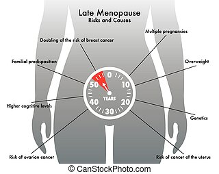 late menopause - medical illustration of the symptoms of...