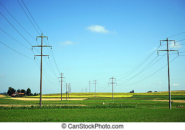 Electrical line on the farm field in rural area of...