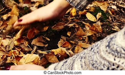 Gathering Up Autumn Leaves
