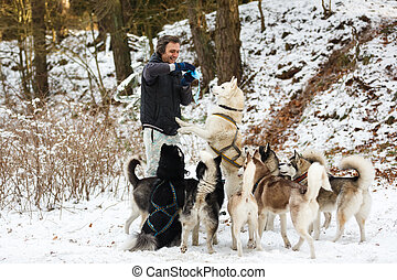 The man feeding the dogs in winter forest