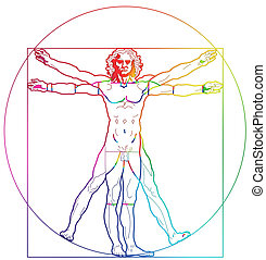 human - The Vitruvian Man