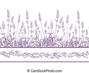 The Lavender Seamless frame line. Bunch of lavender flowers...