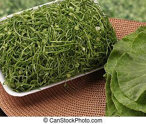 Dark green vegetables are healthier Fresh vegetable