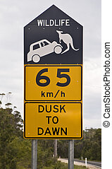 Road sign alerting to the presence of kangaroos