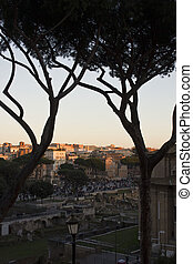 ancient ruins of Roman Forum - View from the top of the...