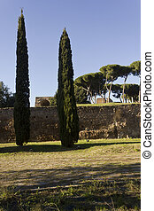 Palatine Hill - View of Palatine Hill from Via di San...