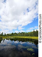 Reflections on a Wilderness River - Reflections of Clouds on...