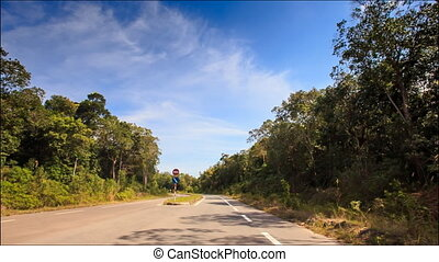 Camera Moves along Separate Line on Highway between Trees -...