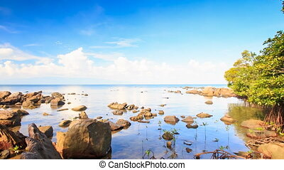 Camera Moves to Different Stones in Shallow Water - camera...