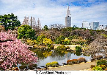 Shinjuku, en, primavera,