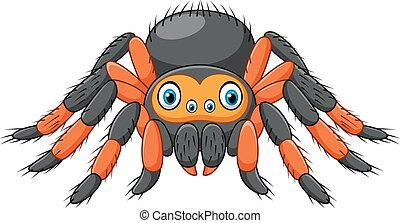Cartoon spider tarantula - Vector illustration of Cartoon...