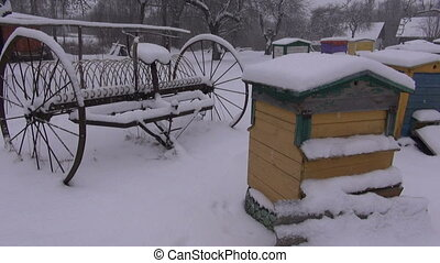 Beehives and horse rake in yard - Colorful beehives and old...