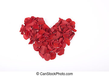 Red petals heart, love valentines flowers metaphor