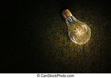 Light bulb on grass