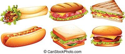 Different kind of fastfood illustration