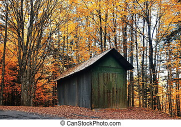 Old shack in the forest in autumn