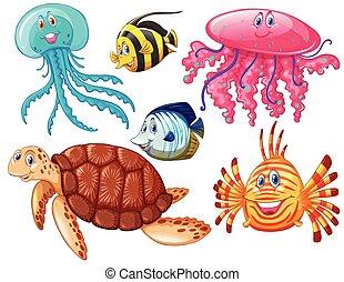 Various kind of sea animals illustration