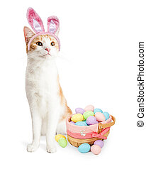 Cute Cat Easter Bunny With Basket - Adorable little kitten...