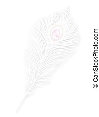 Vector isolated white peacock feather EPS10 - Vector...