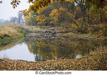 Beautiful lake in Autumn time