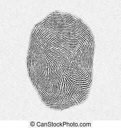 fingerprint pattern isolated on white.