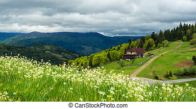landscape in the mountains with wildflowers in the foreground and a farmhouse in the distance