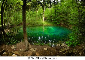 beautiful pond in the woods, Ochiul Beiului, Caras Severin...