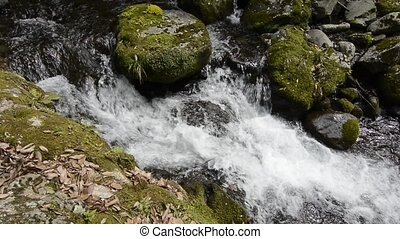 White narrow brook flowing among a mossy stones