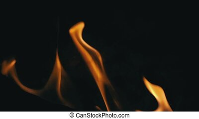 Closeup of Flames Burning on Black Background