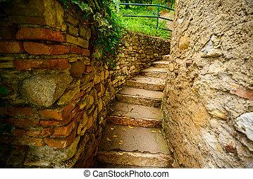 stone stairs in garden
