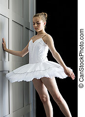 Beautiful Ballerina - A young girl in a ballerina costume...