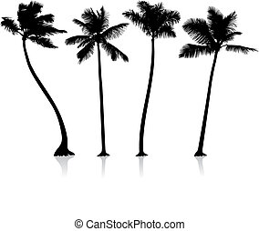 palm trees background - Origianl Vector Illustration: palm...