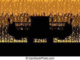Corn field harvesting with combine harvester yellow abstract...