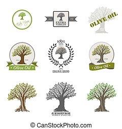 Set of olive oil label.