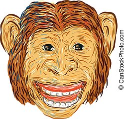 Chimpanzee Head Front Isolated