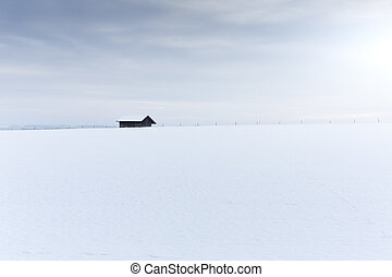 Single old shack on a snow field
