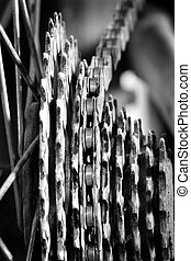 Bike Chain and Gear Cogs Links - Bike chain links and cogs...