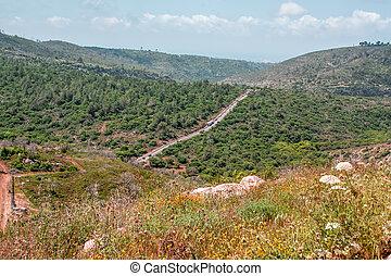 landscape - Wild Israel landscape