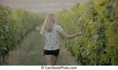 Cheerful girl walks between rows of vines in the countryside