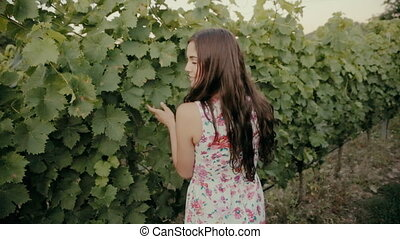 Beautiful brunette going along the rows of vines