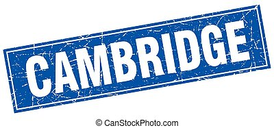 Cambridge blue square grunge vintage isolated stamp