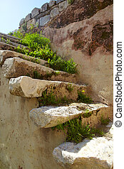 Roman Bath ruins - Spring Flowers and grass growing on the...