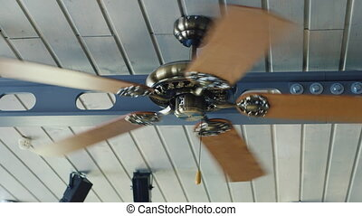 Fan turns on the ceiling