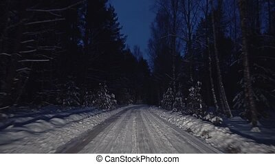 Travel through the forest winter night road