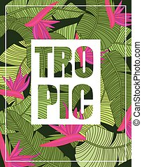 Tropical Background with Lettering, print on t-shirt. vector...